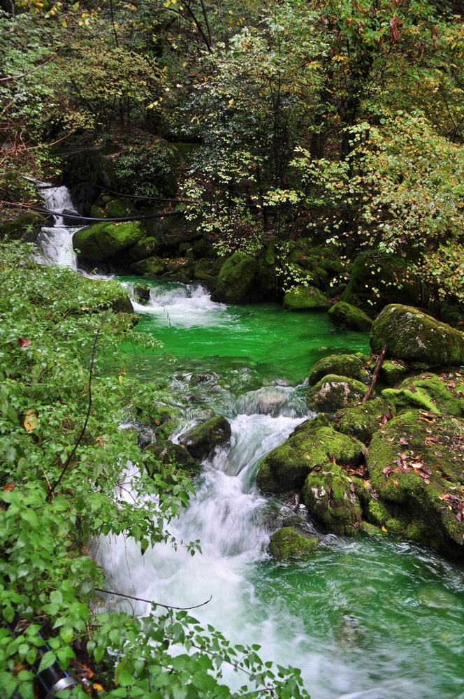 Il fiume verde a Nesso (foto Mauro Inglese)