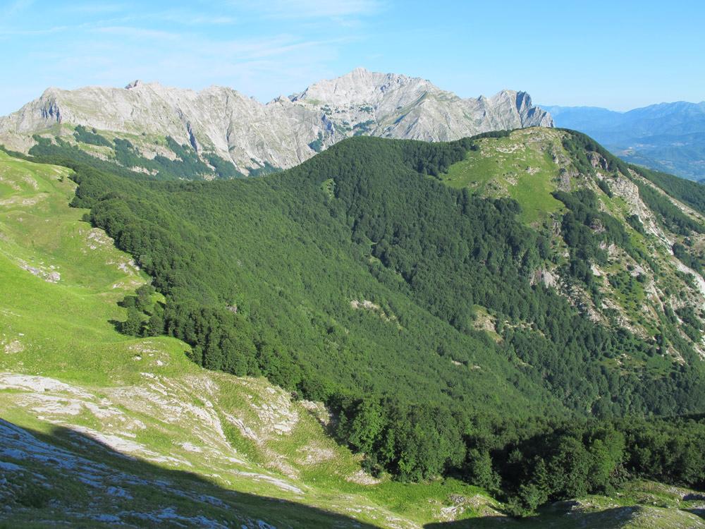 Panoramica area carsica (foto Fabio Bollini)